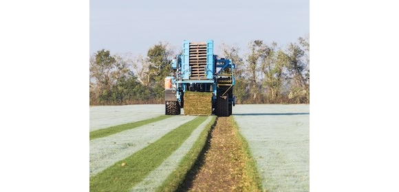 Figure 3. FireFly has successfully automated turf stacking, a process traditionally done by hand, thus, improving both productivity and reliability.