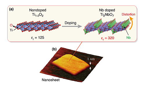 Tailor-made dielectric nanosheet via controlled nanoscale doping. (a) Structural change induced by Nb doping. (b) AFM image of titanium-niobate nanosheet