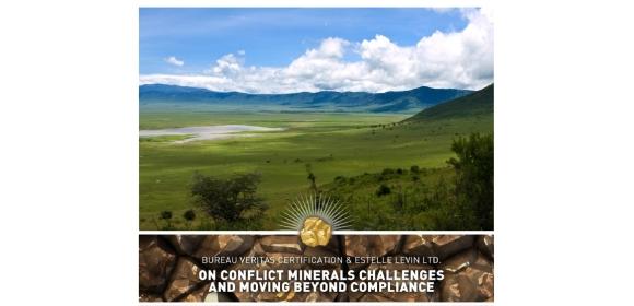 Bureau veritas bureau veritas advises on conflict minerals - Bureau veritas industrial services ...